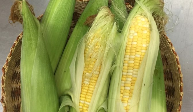 Organic CORN is back