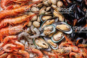 micronutrients shellfish